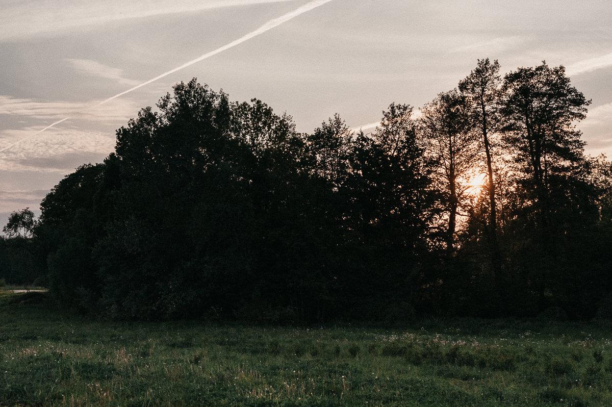 Laka i las w czasie zachodu slonca